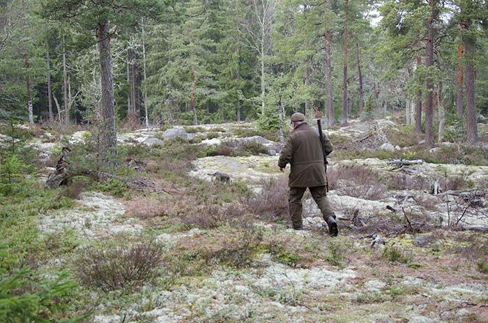 Expressens krönikör Lotta Gröning avslöjar sitt agg till jakt och Svenska Jägareförbundet. Foto Magnus Rydholm