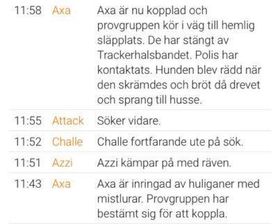 Utdrag ur liverapporteringen från Räv-SM på lördagen. Axa återvände skräckslagen till sin husse.
