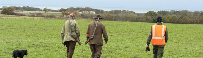 Varför anses jaktkunskaper vara belastande i en Viltförvaltningsdelegation. Foto Magnus Rydholm