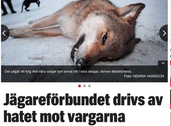 Vill vi hjälpa jaktmotståndare att sätta sina frågor på agendan? Faksimil från Expressen.